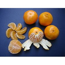 Clementine per .5 kg (about 4)