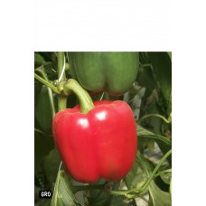 Peppers red ea