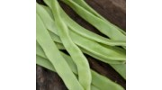Runner beans priced per 300 gm bag